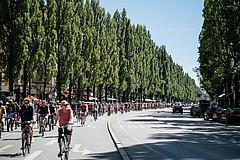 ADFC-Sternfahrt: Radfahrer auf breiter Straße